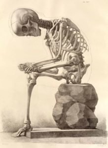 Image of a skeleton sitting on a rock with its left foot resting on its right knee. The skeleton is rubbing the left foot.